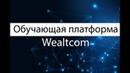 Обучающая платформа Wealtcom. Честный обзор