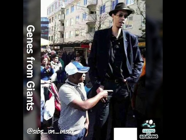 The Genes of Giants Still Exist