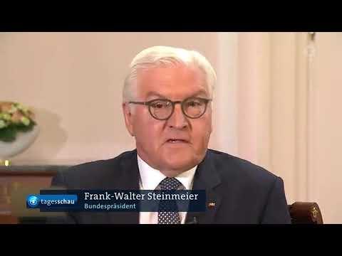 Steinmeier, halt deine antideutsche fresse