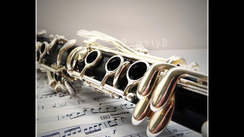MONOLOG NR. 3 for solo clarinet. Erland von Koch. Josep Fuster, clarinete