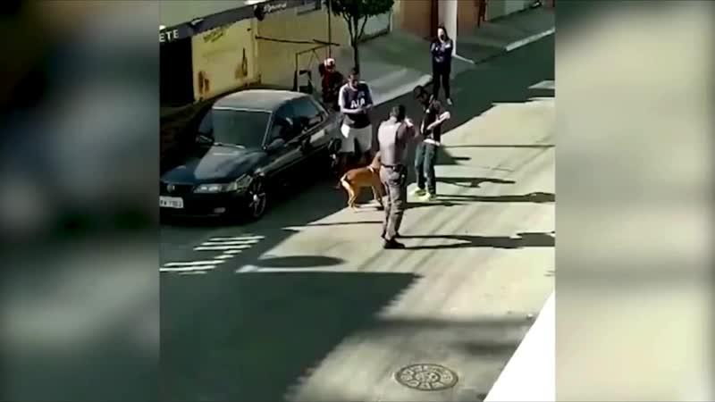 Brazilian officer steps on neck of 51 year old black