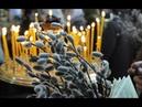 Вербное воскресенье Суть праздника Приметы и обычаи