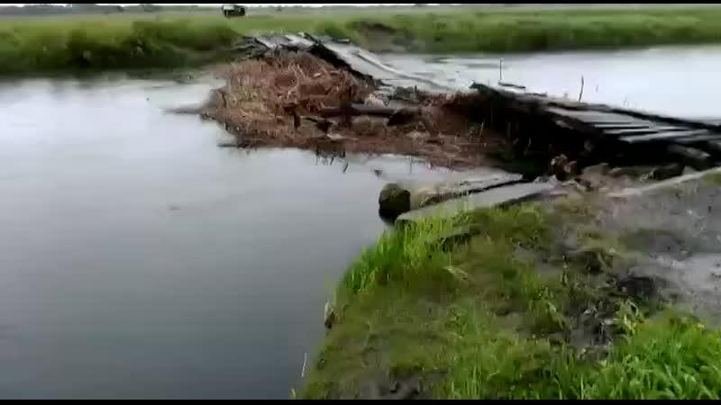 SOS Загрязнение реки ВОРОНА