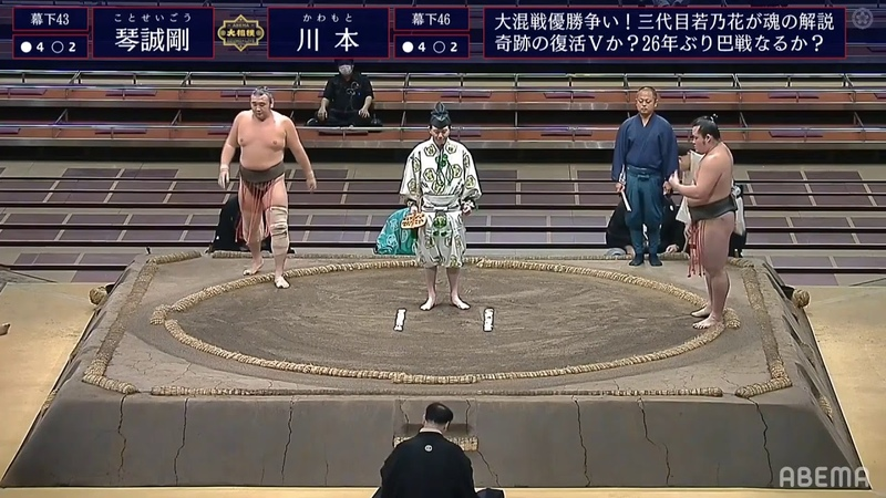 Sumo LIVE Stream – July, 2020 - Day 15