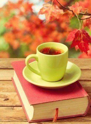 А осенью, как будто невзначай, В сады придёт морозная прохлада,Я буду чаще пить горячий чай,Любуясь апогеем листопада.Любовь