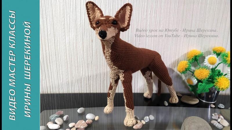 Собака Той терьер ч 4 Dog toy terrier р 4 Amigurumi Crochet Вязать игрушки амигуруми