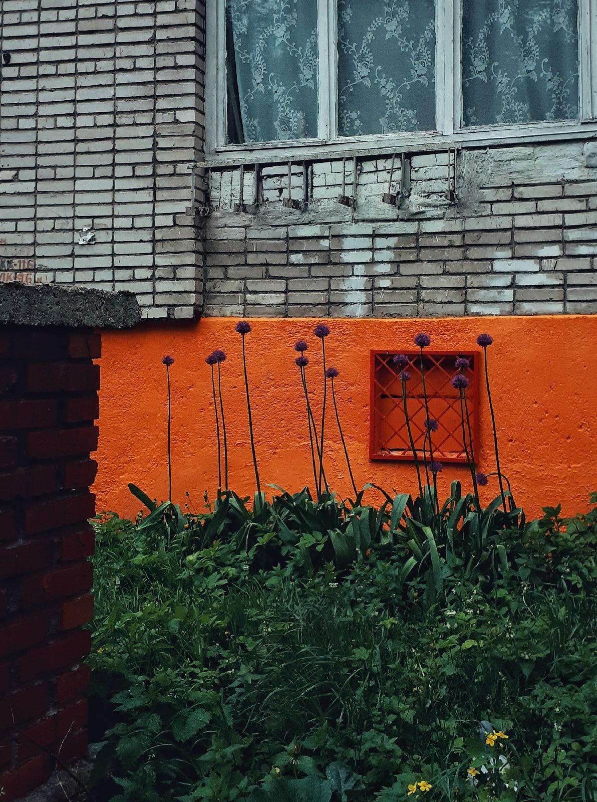 Тула.  - фото - Фото