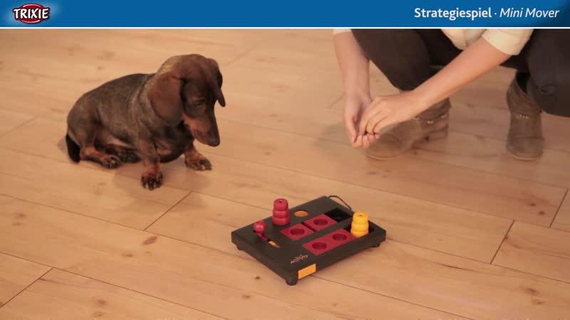 TRIXIE Развивающая игрушка для собак Dog Activity Mini Mover