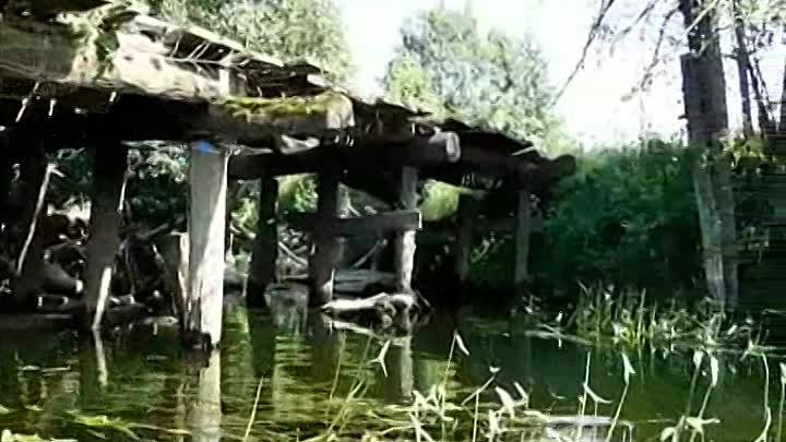 Река Свапа Курская область Август 2017 г Поход одиночки Фильм тринадцатый Автор Юрец В