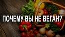 Вкусные оправдания мясоедения и новые вещатели с Бали Аналитика Фролова Ю А