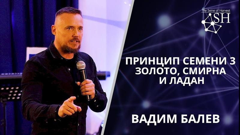 Принцип семени 3 Золото смирна и ладан Вадим Балев Киев 1 2 2020