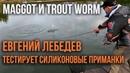 Евгений Лебедев тестирует силиконовые приманки Maggot и Trout Worm от AKARA для ловли форели.