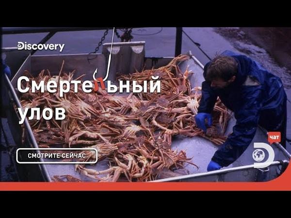 Опасность рядом Смертельный улов Discovery