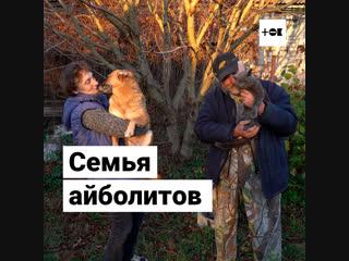 Алексей и Яна Мурашовы переехали из Москвы в лес, чтобы спасать животных