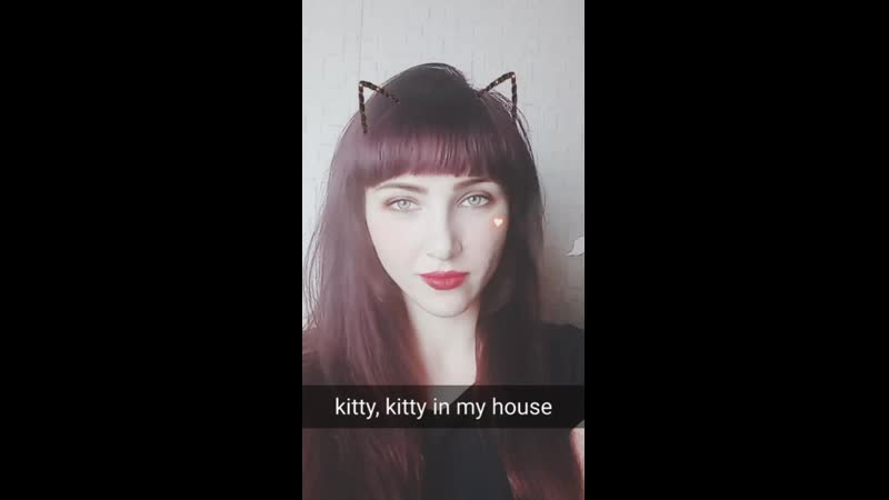 Kitty, kitty in my house