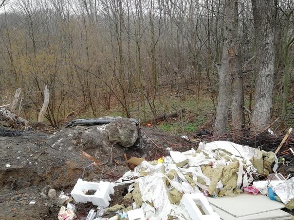 Курские дорожники устроили свалку в Поповском лесу