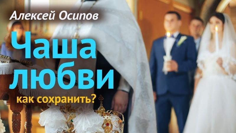 Брак или сожительство О гражданском браке (А.И. Осипов)