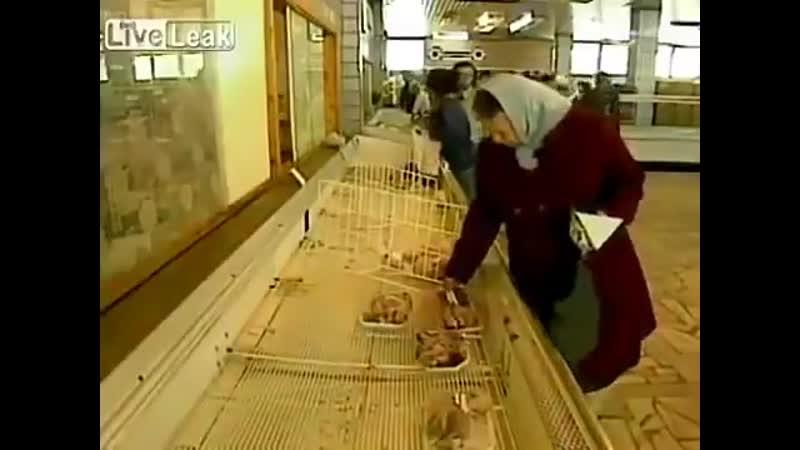 Советский Супермаркет или как тогда говорили- Универсам ,год 1986