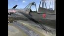 P-40 inflight oil leak emergency at Stuart Airshow - Thom Richard