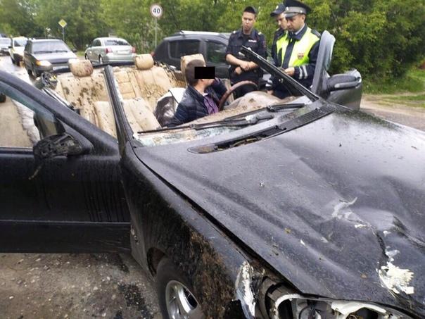Полицейские задержали мужчину с ружьем в кабриолете с кроваво-фекальными пятнами 20 мая на полицейские получили сигнал о том, что на трассе Иваново Кинешма неизвестный на своем автомобиле сбил