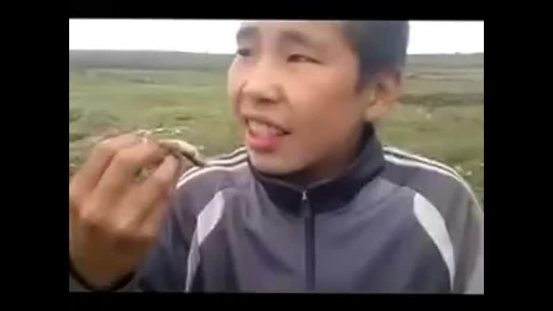 мальчик съедает ЖИВУЮ лягушку на (якутском языке).mp4