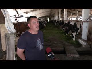 Марий Эл ТВ: Фермер Сергей Гусев из д. Руясола создает  новые рабочие места на селе