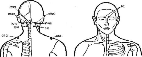 МАССАЖ ПРИ БОЛЯХ В ПЛЕЧЕВОМ СУСТАВЕ Массаж, проведенный в течение 10-15 минут, поможет снять боль и напряжение в области плеч и шеи. Если боли в плечах стали уже хроническими, то потребуется