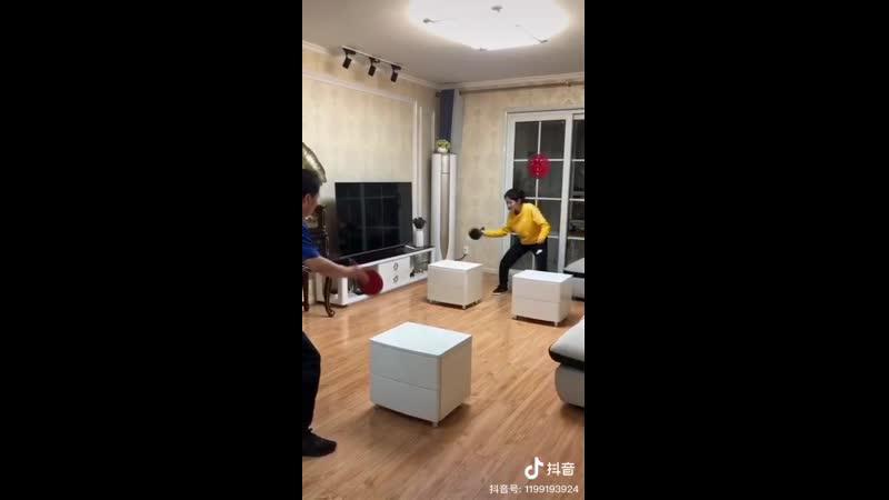 Домашний китайский пинг понг