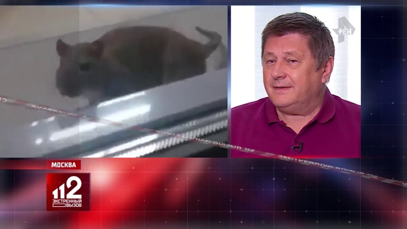 Крыса напала на работника Магнита !