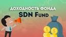 Результаты инвестора SDN fund