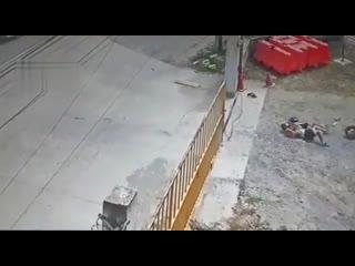 Женщина с дочерью не заметила толстую цепь.