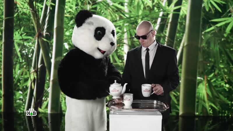 Выпуск 6 Панда подсказка и выступление