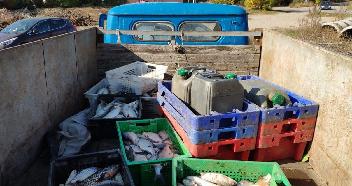 Под Таганрогом пограничники задержали 3 браконьеров с уловом на сумму более 500 тыс. рублей