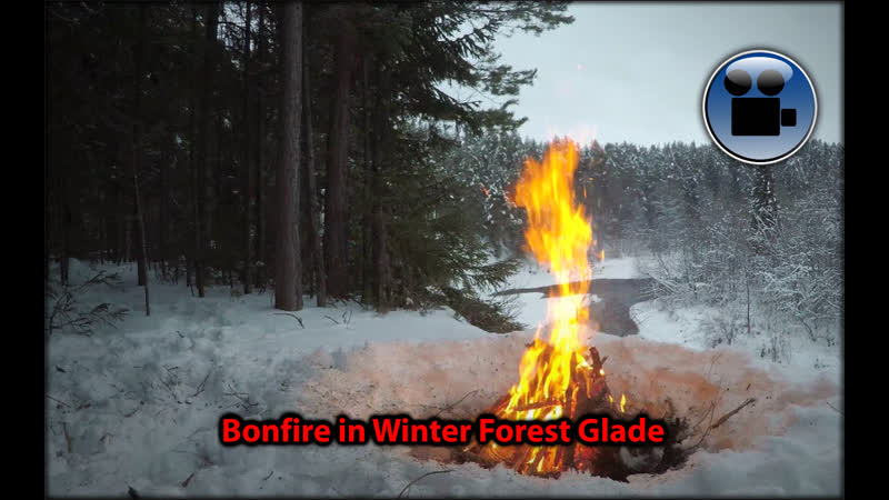 Bonfire in Winter Forest Glade