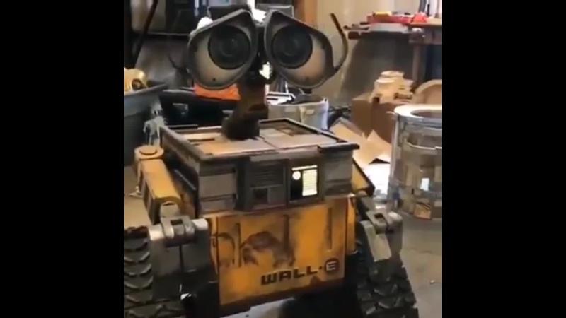 Потрясающая самодельная роботизированная копия Wall-E.