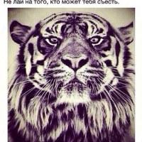 Фотография Вани Головицкого ВКонтакте