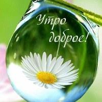 Личная фотография Ольги Коньшиной ВКонтакте