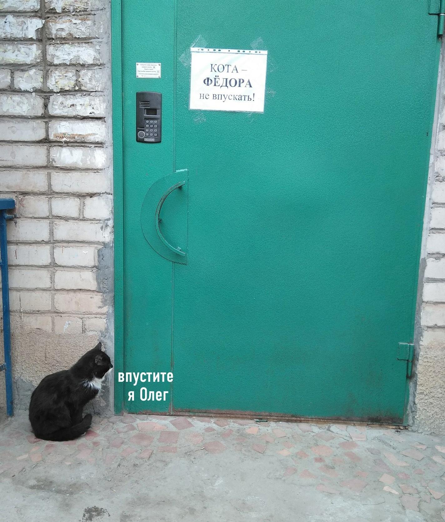 Олега-то можно впустить