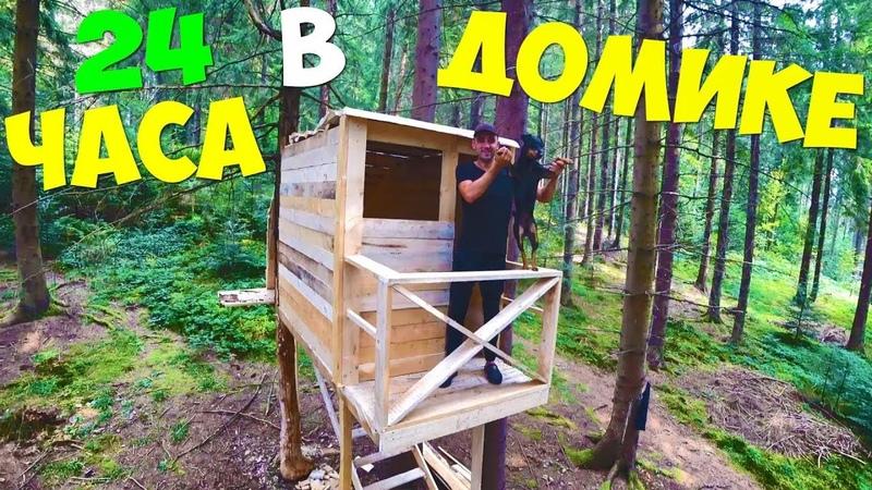 24 Часа в домике на дереве Доделываю домик жарю зефир