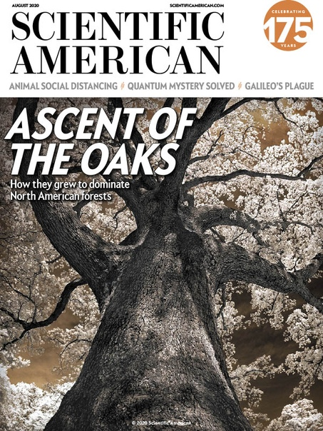Scientific American 08.2020