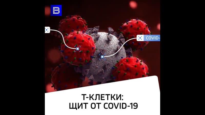 Т-клеткищит от COVID-19