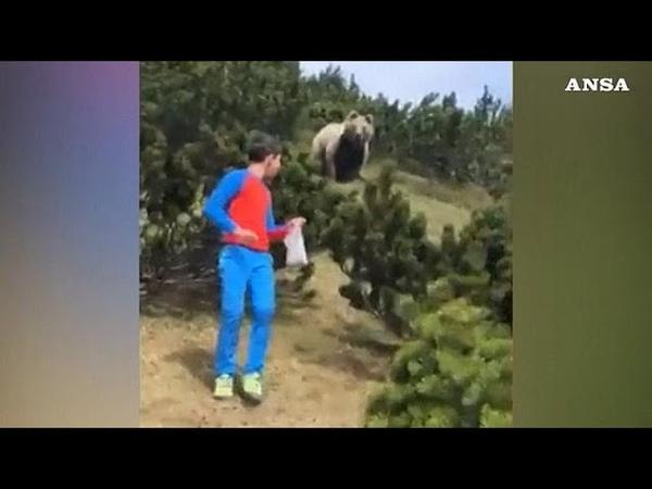 Медведь преследует мальчика в горах Италии