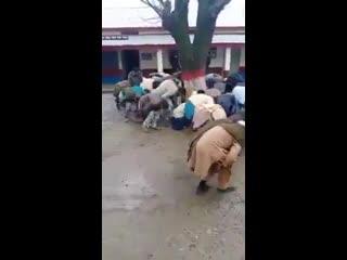 Так в Пакистане полицейские наказывают нарушителей карантина