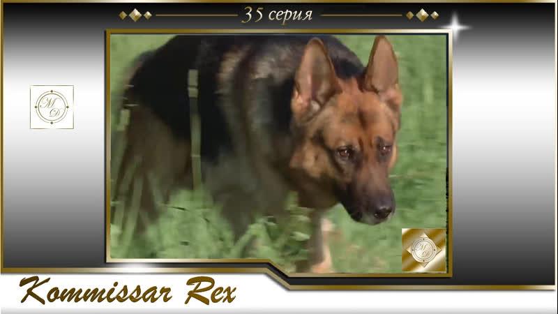 Komissar Rex 3x06 Комиссар Рекс 35 серия