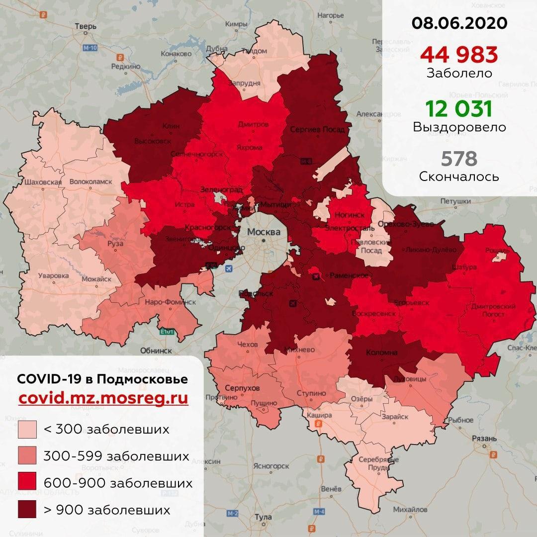 В Дубне выявлено 174 человека, заболевших коронавирусом с момента начала пандемии
