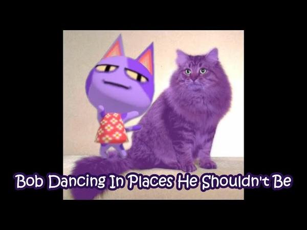 Bob Dancing In Places He Shouldn't Be Animal Crossing Memes KawaiiBeth