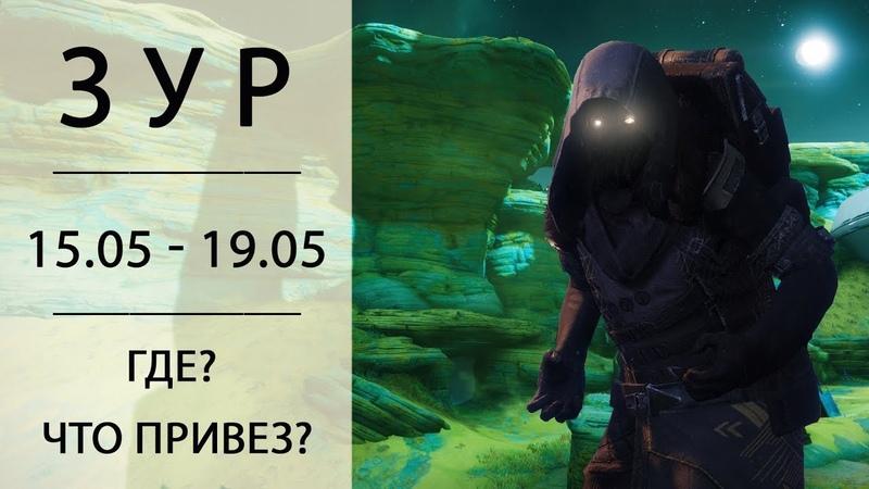 Destiny 2 Зур дарси дюны койот когти 15 мая 19 мая