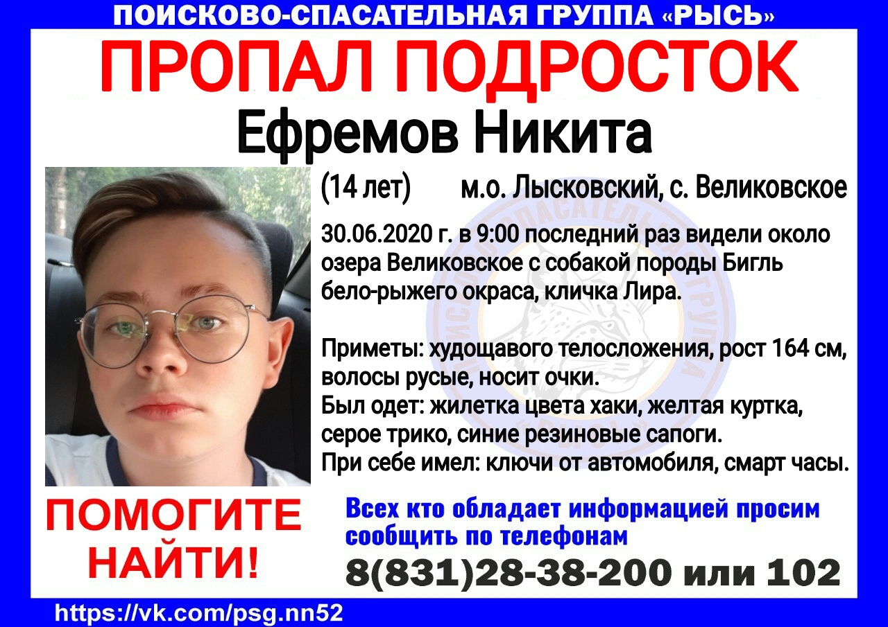 Ефремов Никита, 14 лет, м. о. Лысковский, с. Великовское