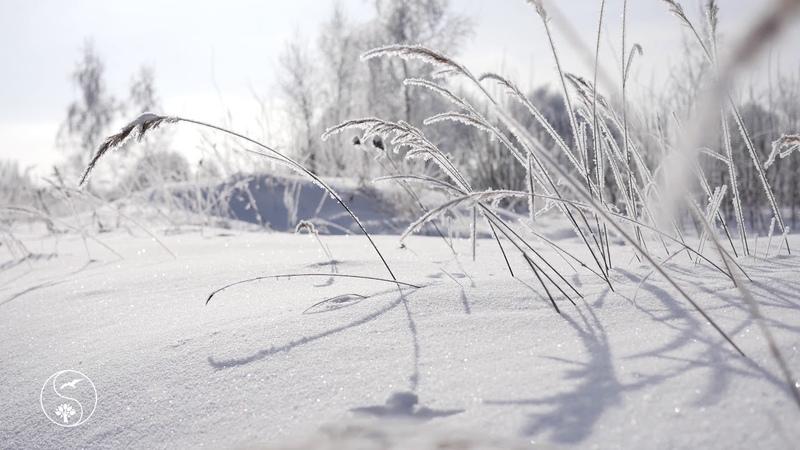 КРАСИВЫЕ ЗИМНИЕ ПЕЙЗАЖИ ~ Природа зимой ~Winter ~Relax
